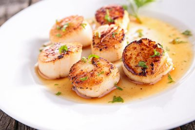 simplyscallops